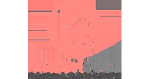 Fasion Guide Logo